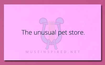 Describe the Setting – The Unusual Pet Store