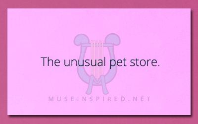 Describe the Setting – The Unusual Pet Store