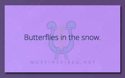 What's the Story – Butterflies in the snow.
