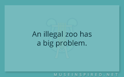 What's the Story – An illegal zoo has a big problem.